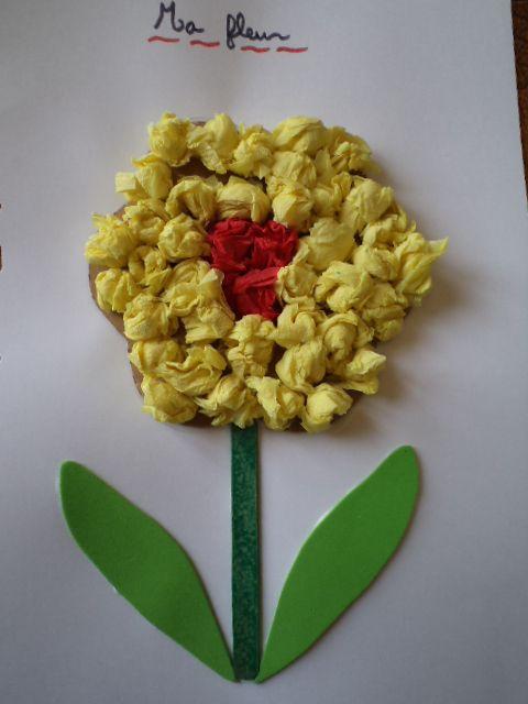 Imagier sensoriel - Boule de fleur en papier crepon ...